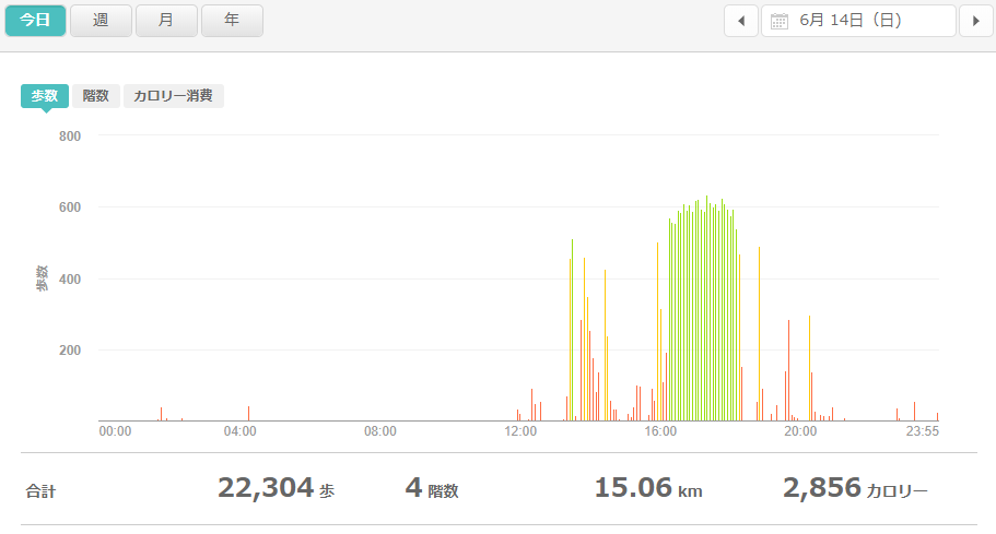 fitbitログより 運動データ2020年6月14日分