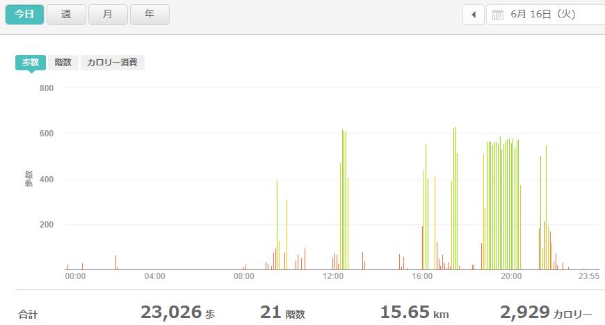 fitbitログより 運動データ2020年6月16日分