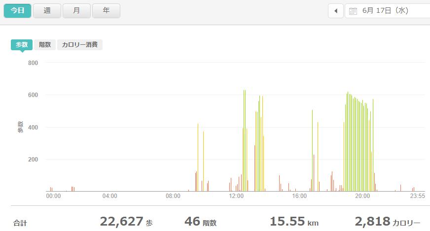 fitbitログより 運動データ2020年6月17日分