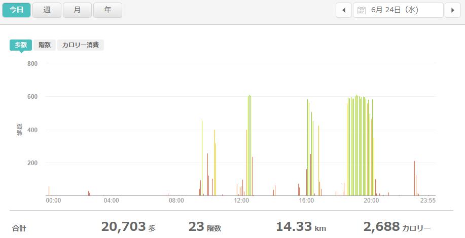 fitbitログより 運動データ2020年6月24日分