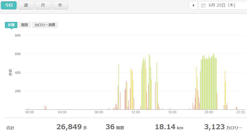 fitbitログより 運動データ2020年6月25日分