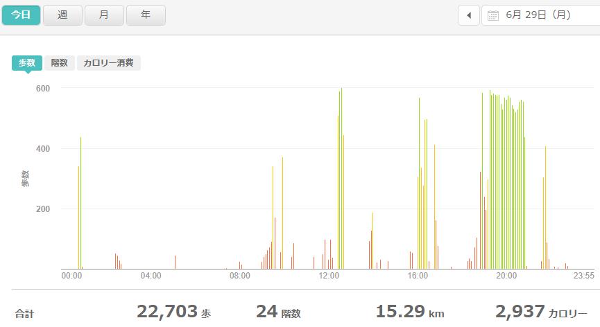fitbitログより 運動データ2020年6月29日分