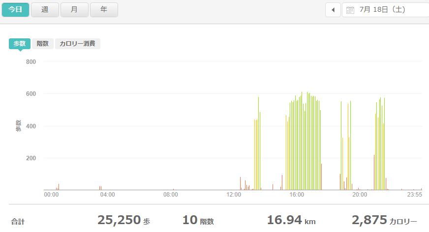 fitbitログより 運動データ2020年7月18日分