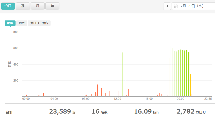 fitbitログより 運動データ2020年7月29日分