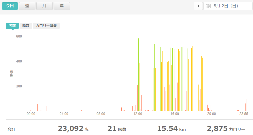 fitbitログより 運動データ2020年8月2日分