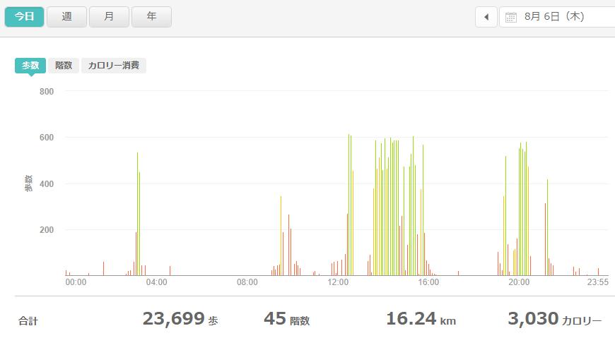 fitbitログより 運動データ2020年8月6日分
