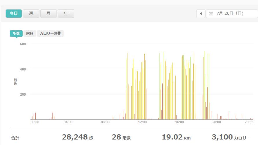 fitbitログより 運動データ2020年7月26日分