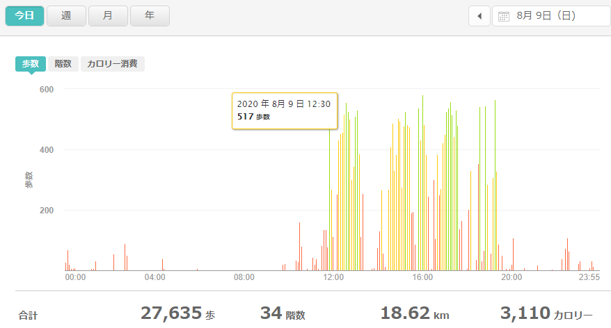 fitbitログより 運動データ2020年8月9日分