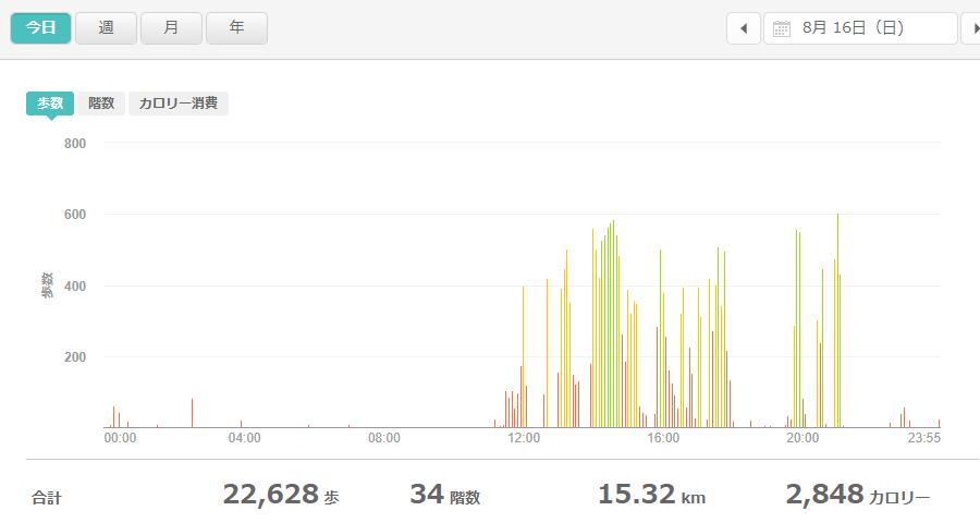 fitbitログより 運動データ2020年8月16日分