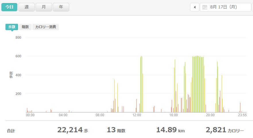 fitbitログより 運動データ2020年8月17日分