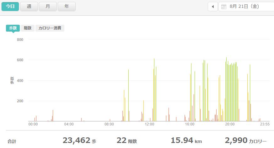 fitbitログより 運動データ2020年8月21日分