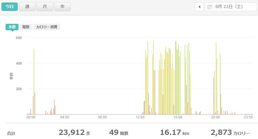 fitbitログより 運動データ2020年8月22日分