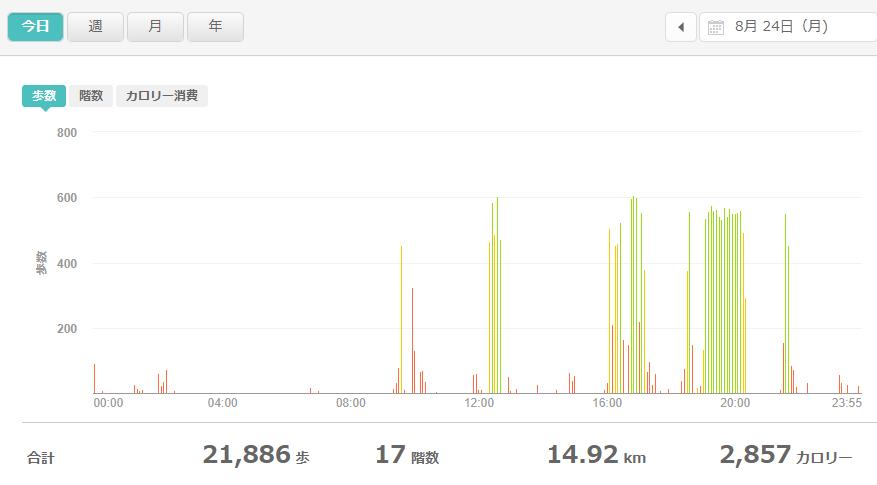 fitbitログより 運動データ2020年8月24日分