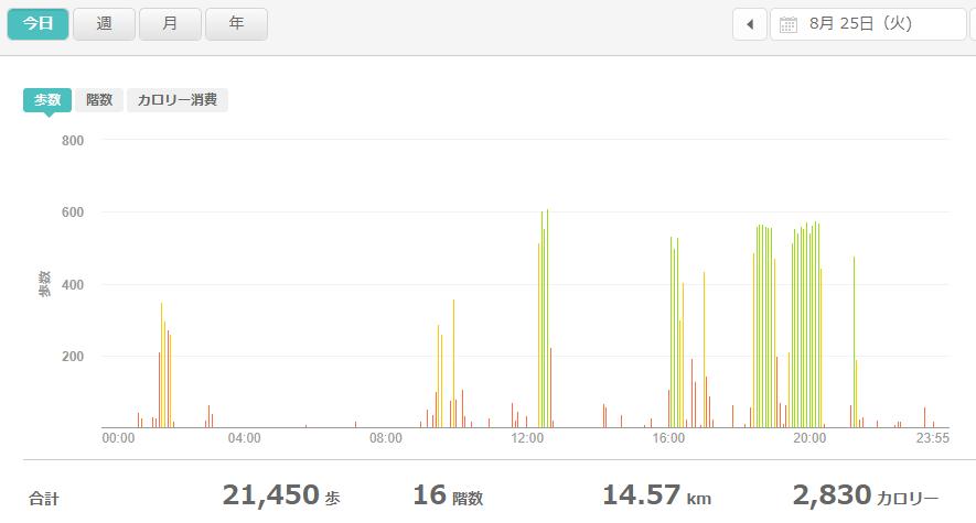 fitbitログより 運動データ2020年8月25日分