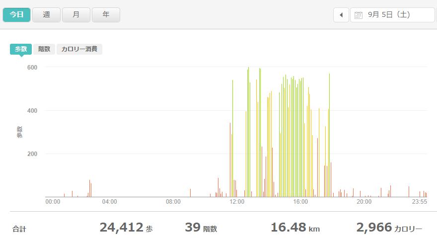 fitbitログより 運動データ2020年9月5日分