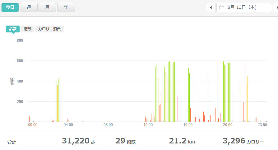 fitbitログより 運動データ2020年8月13日分