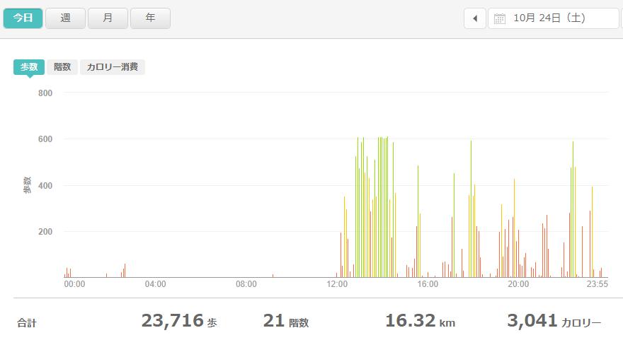 fitbitログより 運動データ2020年10月24日分
