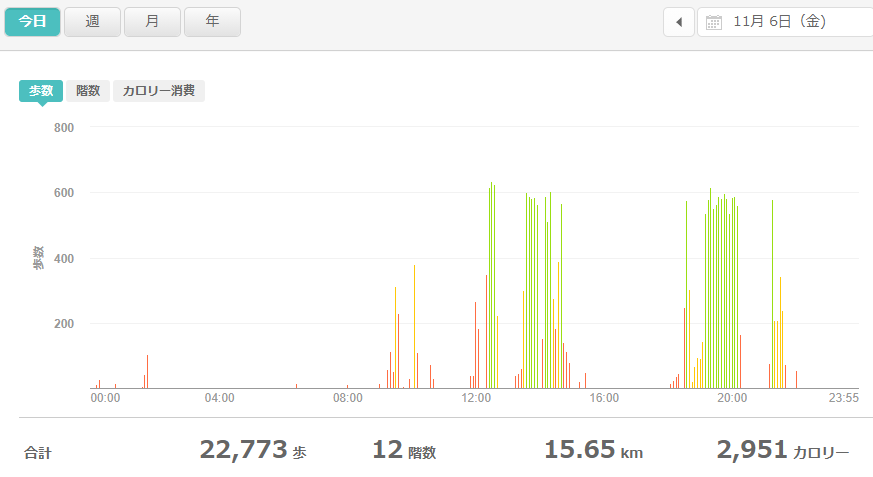 fitbitログより 運動データ2020年11月6日分