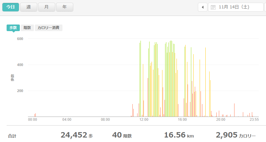 fitbitログより 運動データ2020年11月14日分