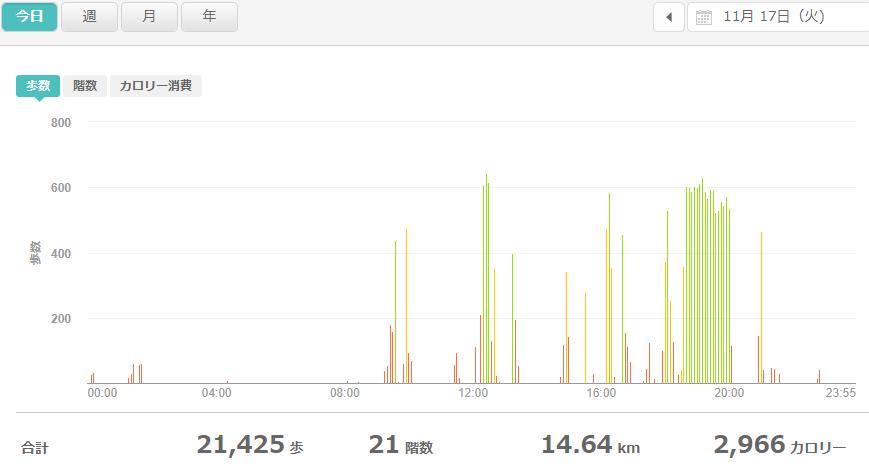 fitbitログより 運動データ2020年11月17日分