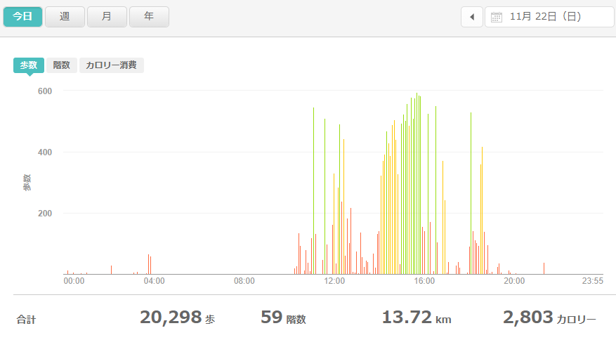 fitbitログより 運動データ2020年11月22日分