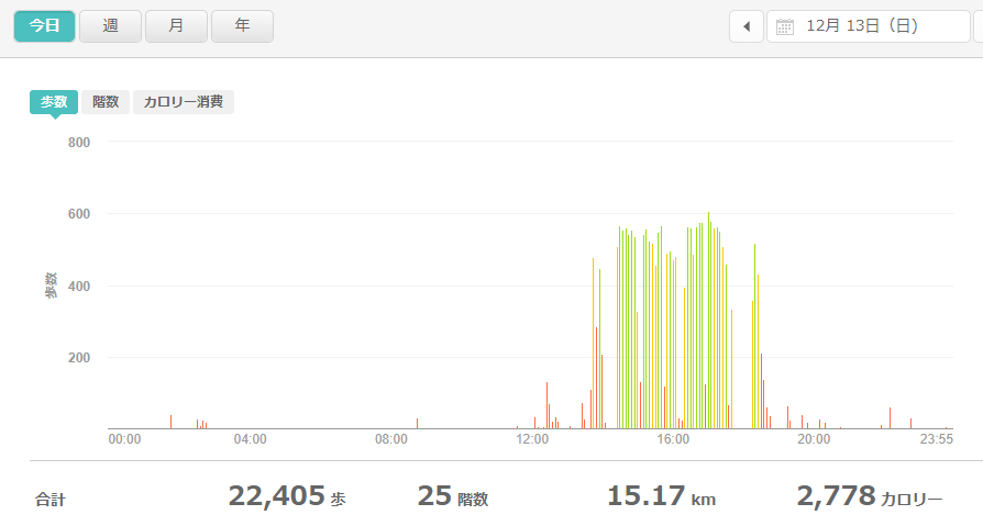 fitbitログより 運動データ2020年12月13日分