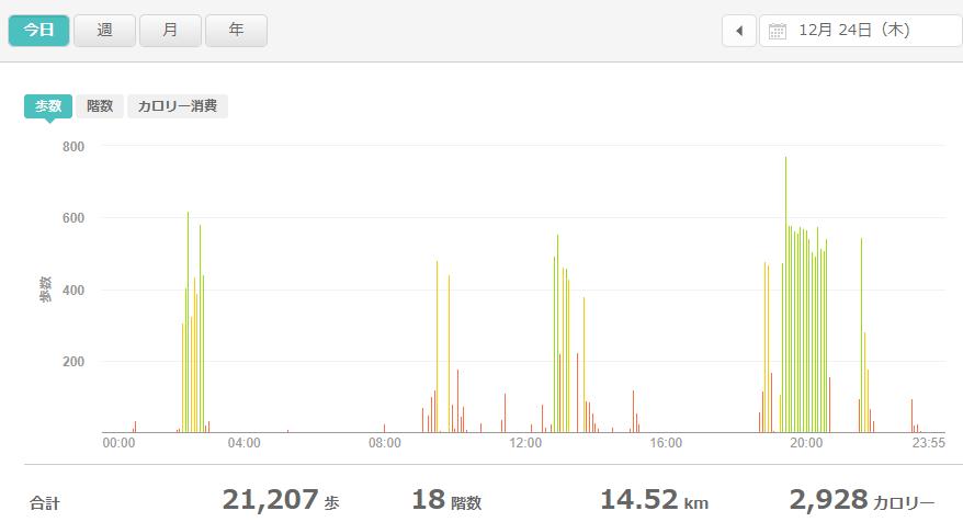 fitbitログより 運動データ2020年12月24日分