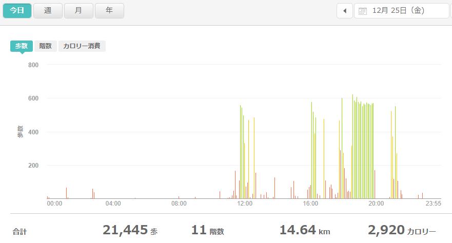 fitbitログより 運動データ2020年12月25日分