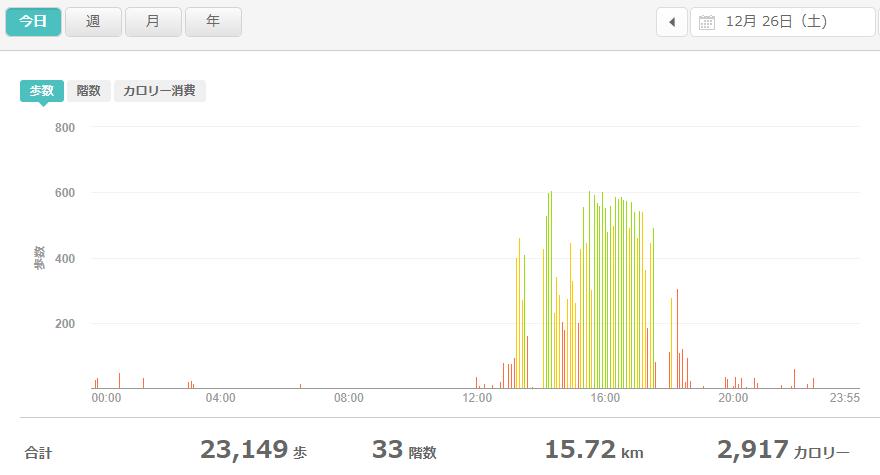 fitbitログより 運動データ2020年12月26日分