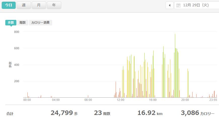 fitbitログより 運動データ2020年12月28日分