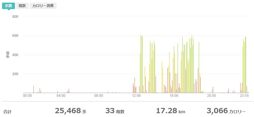 fitbitログより 運動データ2020年12月31日分