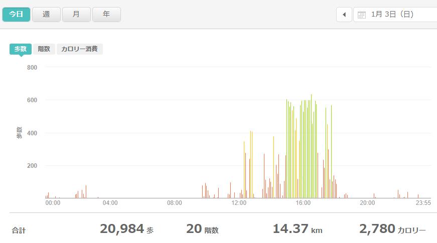 fitbitログより 運動データ2021年1月3日