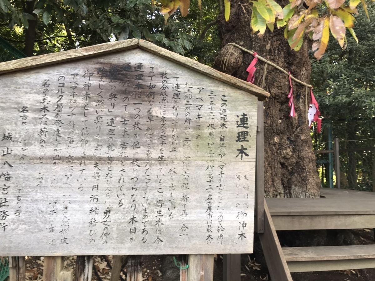 城山八幡宮の連理木(れんりぼく)