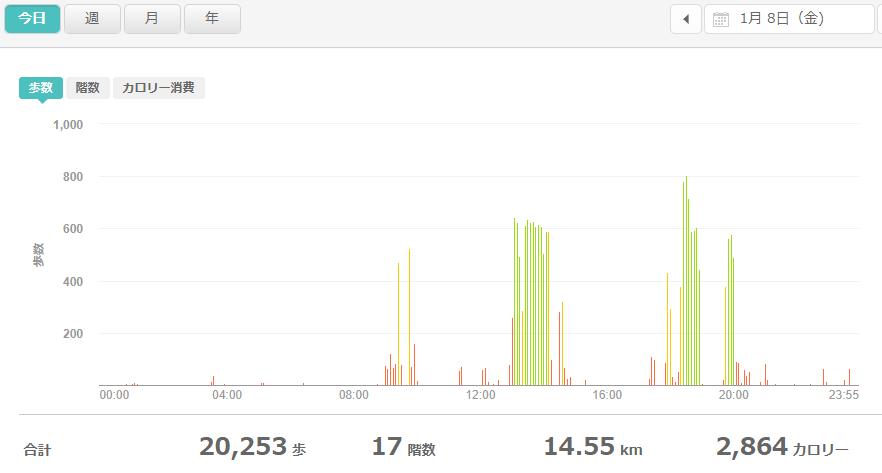 fitbitログより 運動データ2021年1月8日