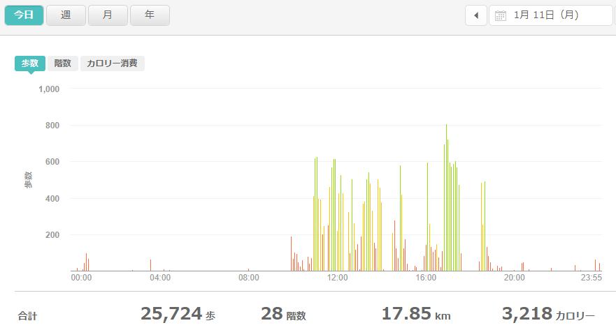 fitbitログより 運動データ2021年1月11日