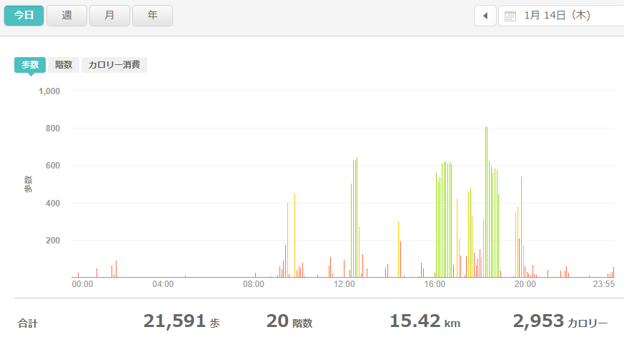 fitbitログより 運動データ2021年1月14日