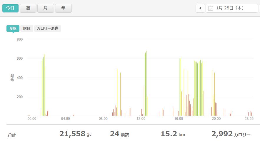 fitbitログより 運動データ2021年1月28日