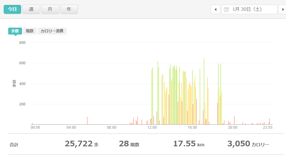 fitbitログより 運動データ2021年1月30日