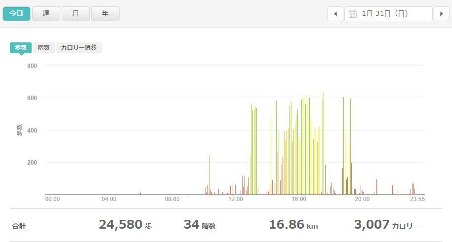 fitbitログより 運動データ2021年1月31日