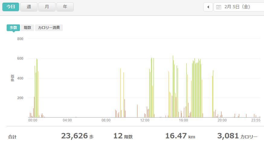 fitbitログより 運動データ2021年2月5日