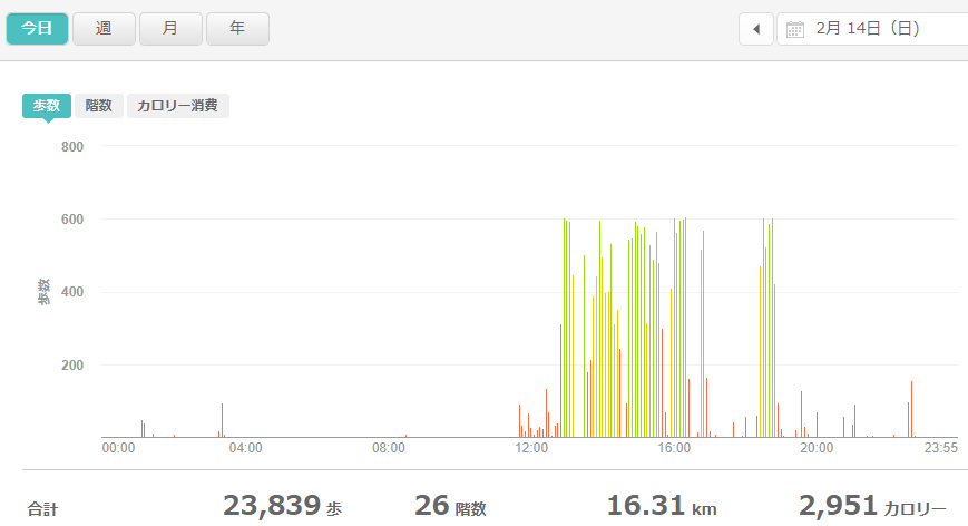 fitbitログより 運動データ2021年2月14日