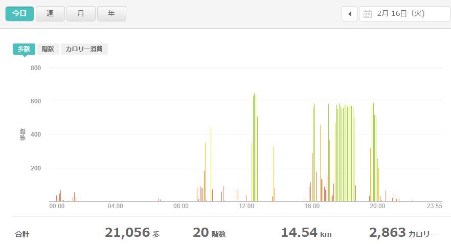 fitbitログより 運動データ2021年2月16日