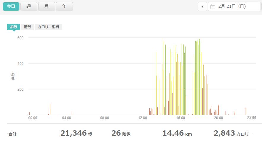 fitbitログより 運動データ2021年2月21日