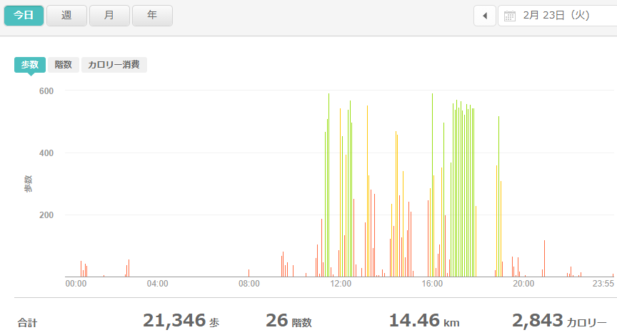 fitbitログより 運動データ2021年2月23日