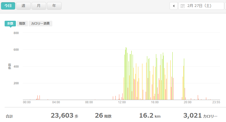 fitbitログより 運動データ2021年2月27日