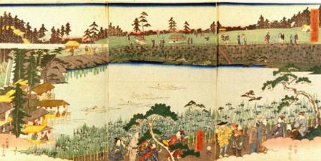一松斎芳宗「十二社菖蒲の図」