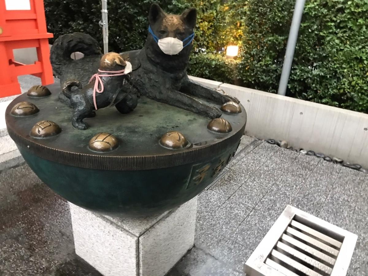 子宝犬(水天宮)2021年3月13日