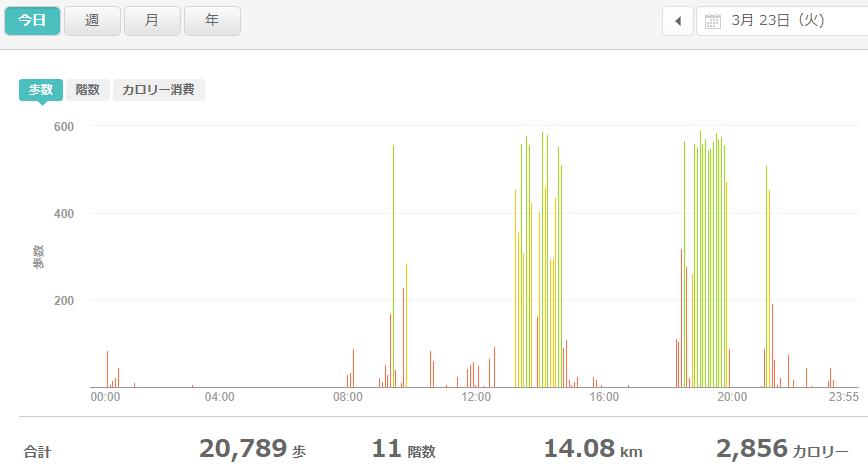 fitbitログより 運動データ2021年3月23日