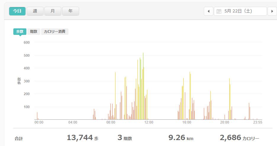 fitbitログより 運動データ2021年5月22日