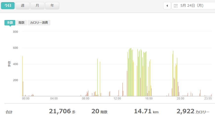 fitbitログより 運動データ2021年5月24日